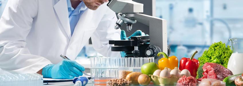 investigador a observar alimentos no microscópio