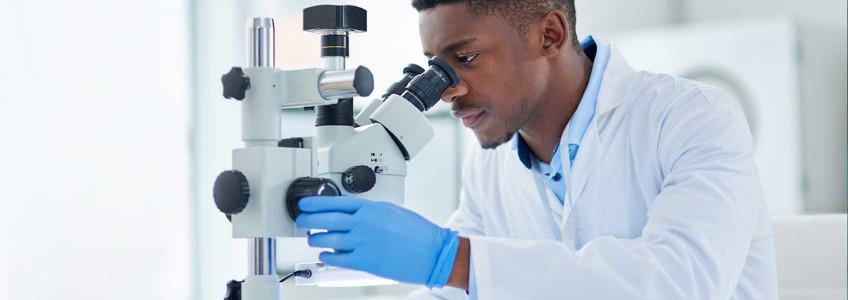 médico a analisar resultados de citologia no microscópio